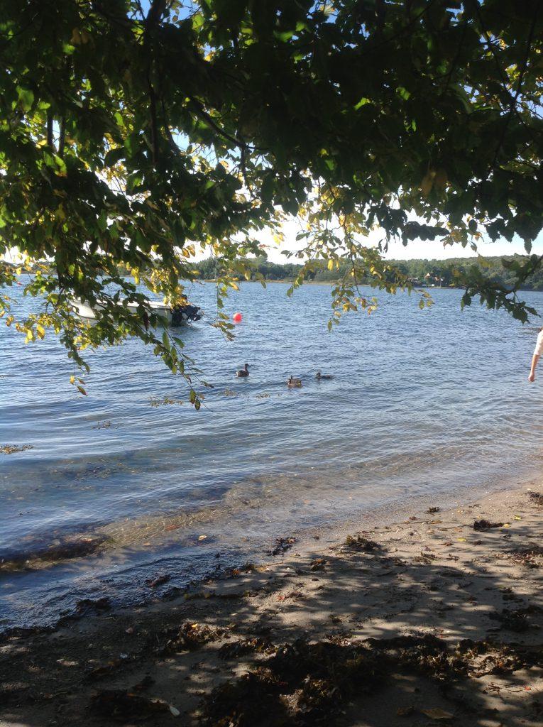 Meditativ vandring ved vandet, trivsel og velvære på en solskinsrig dag